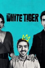 Biały tygrys 2021 Film Online