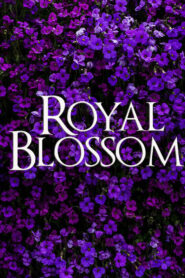 Royal Blossom 2021 Film Online