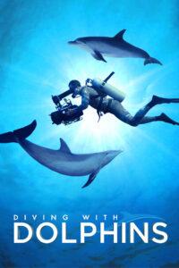 Nurkowanie z delfinami 2020 Film Online