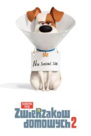 Sekretne życie zwierzaków domowych 2 2019 Film Online