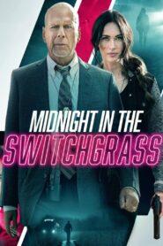 Midnight in the Switchgrass 2021 Film Online